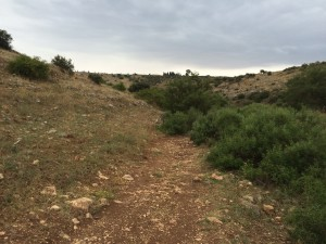 Hiking through the Arbel Valley
